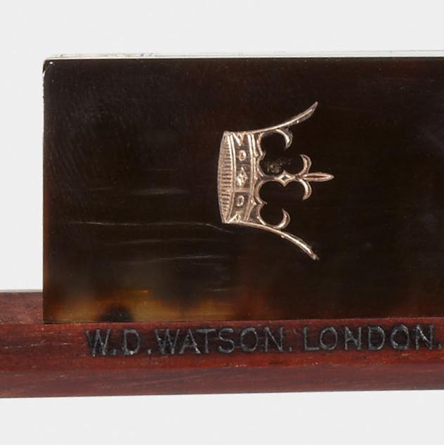 Watson frog