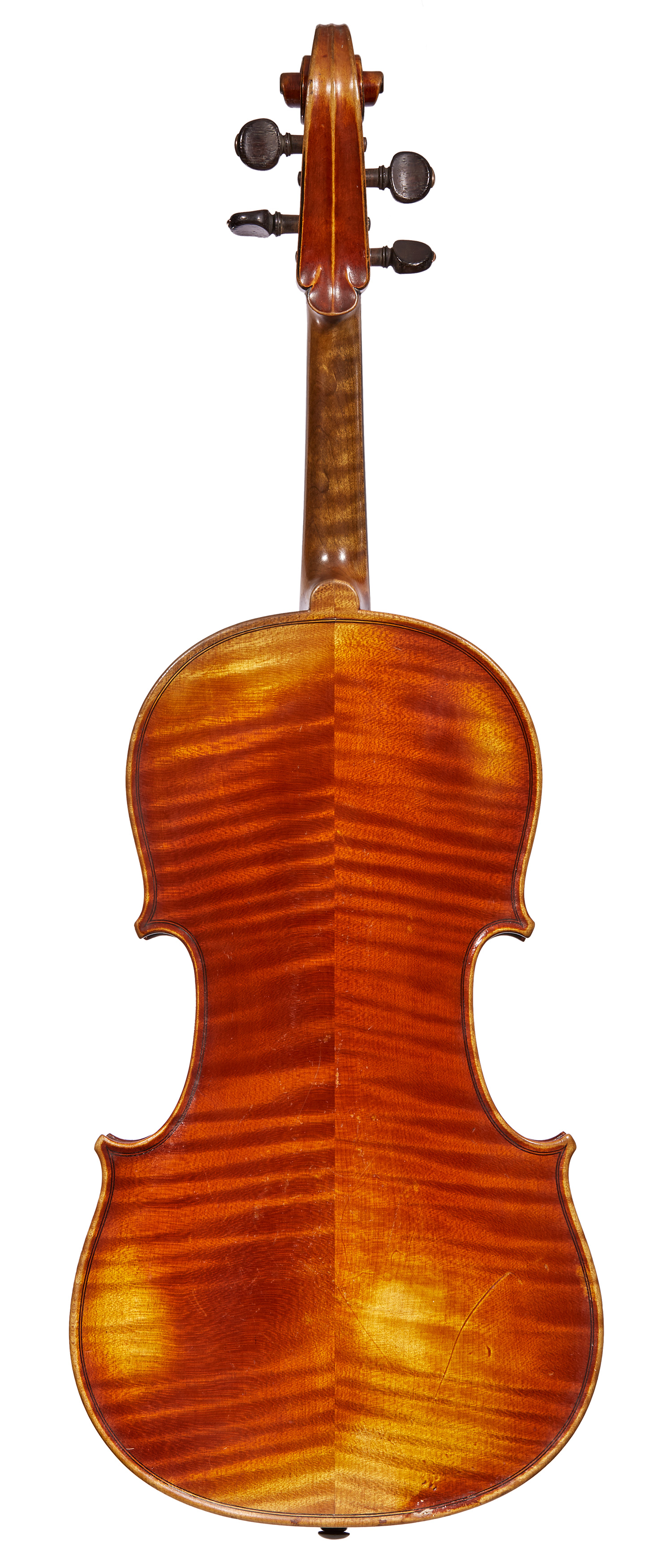 Caressa viola back