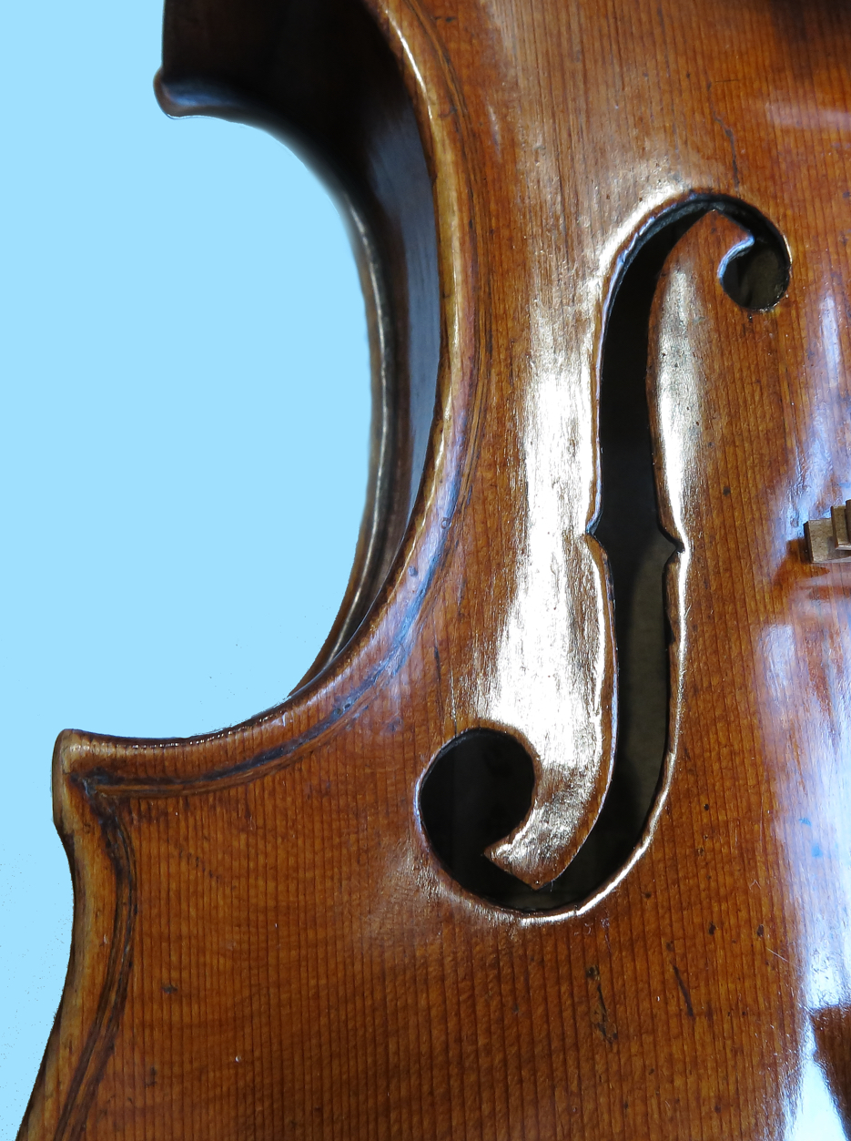 F-hole of a Calcagno violin