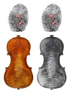 fingerprints violins
