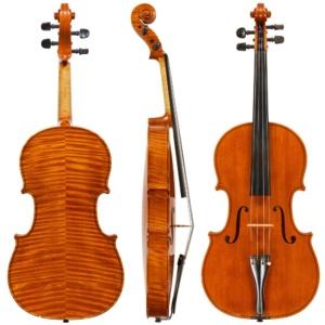Burgess Viola
