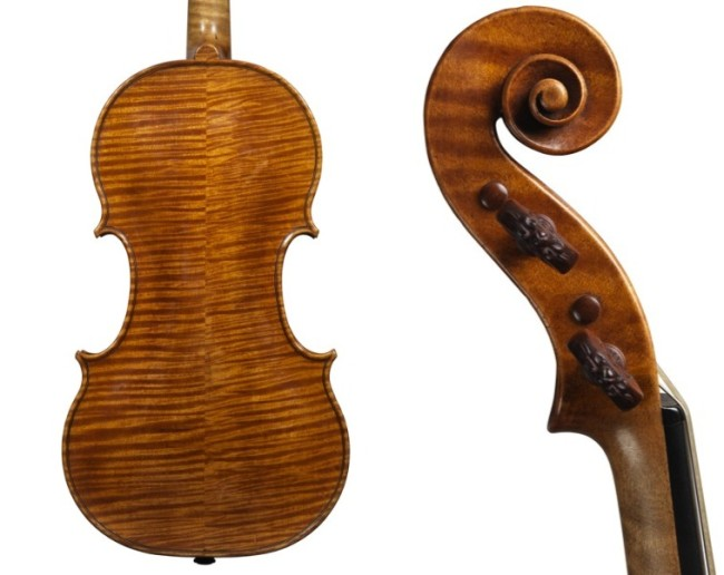 Alard Amati back and head