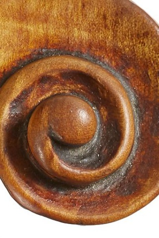 The chamfer throughout is generously rounded and gives the head a softened and smoothed-over appearance.